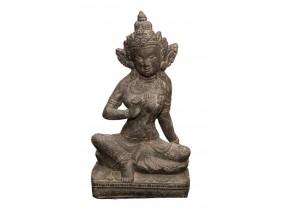 Shiva Assis