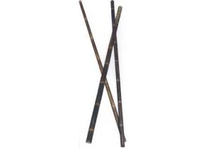 Bamboo Nigra