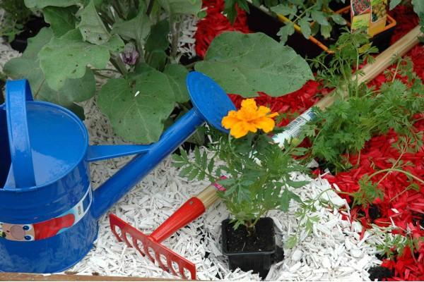 Paillage Organique Coloré Rouge Vermillon - Potager