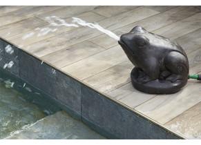 Grenouille Cracheuse - piscine