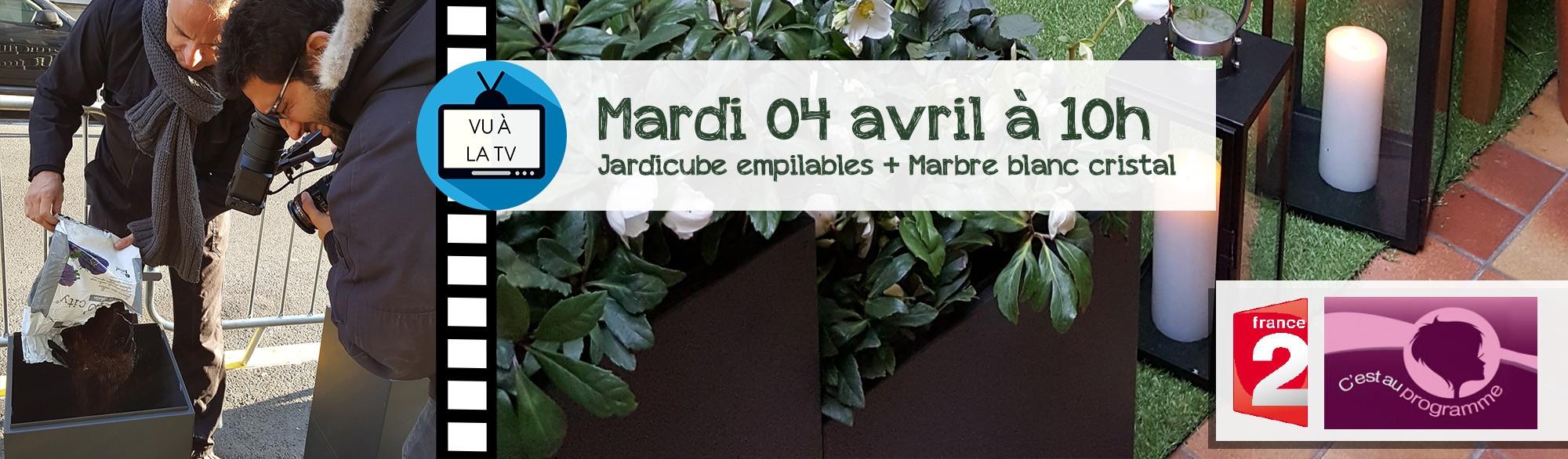 France 2 Jardicube avril 2017
